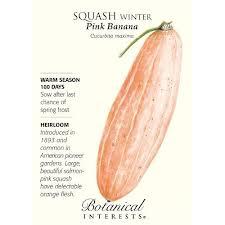 pink banana squash